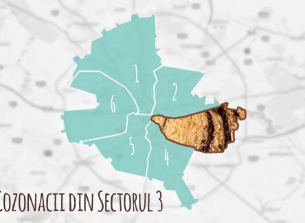 Unde, cat costa si ce tipuri de cozonaci gasesti in Bucuresti – sectorul 3